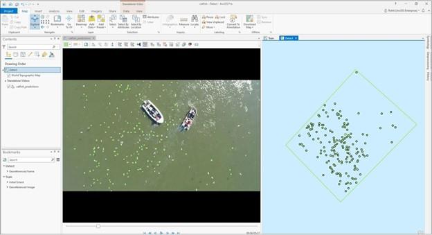 İHA'lardan alınan hareketli videodan tespit edilen yayın balıkları